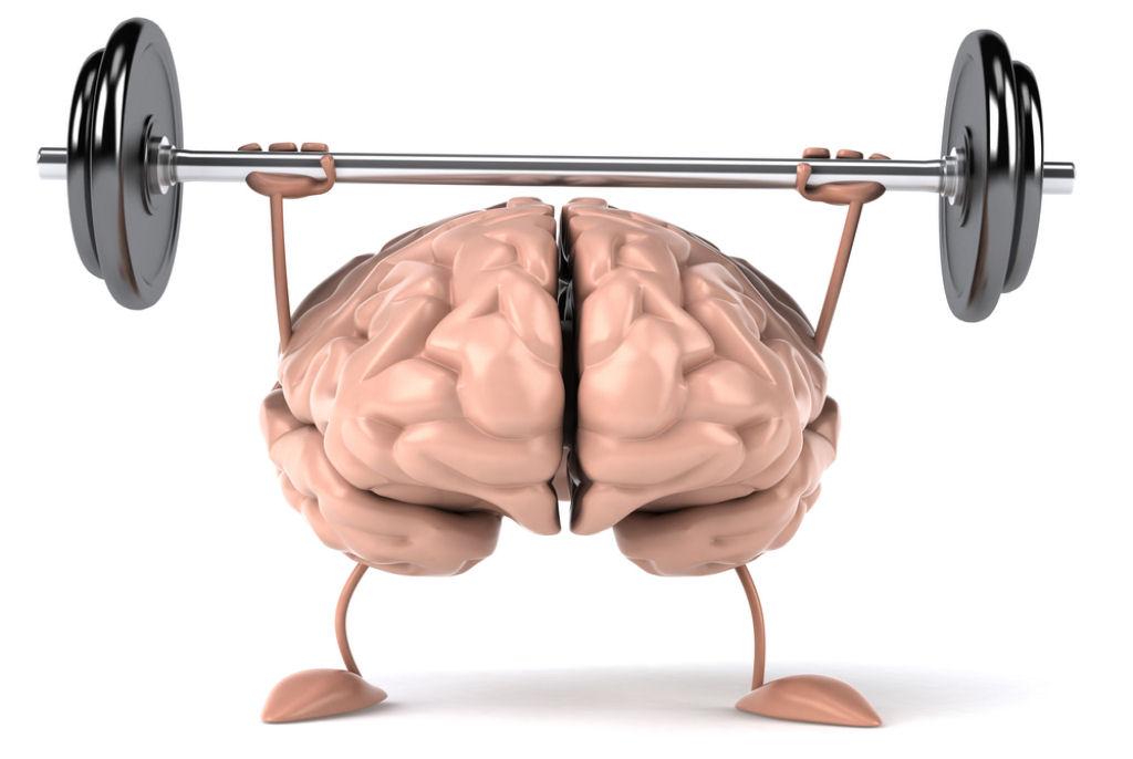 O cérebro queima em um dia calorias equivalentes a correr meia hora – JOLRN